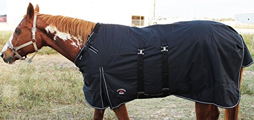 41YJFzgYMPL - Challenger 1200D Turnout Waterproof Horse Tough WINTER BLANKET HEAVY BellyBand
