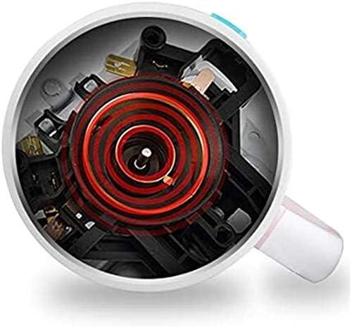 MMWYC Bouilloire électrique en acier inoxydable 304 1,7 L 1350 W Arrêt automatique Anti-sec Isolation à une clé Théière Blanc