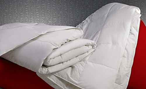 w-hotels-full-queen-midweight-down-blanket