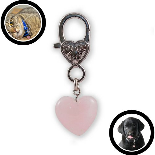 - NEW Harmony Rose Quartz Pendant For Pets: Clean Crystal Healing Energy for Your Beloved Four Legged Friend. Attach to your Pet's Collar to Experience the Healing Powers of Rose Quartz,Crystal Pet Love