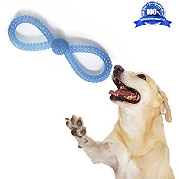 Pet Supplies : SUCCESS Dog Chew Toys for Aggressive