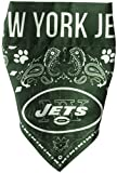 Littlearth NFL Team Dog Bandana