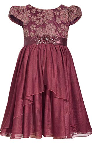Bonnie Jean Big Girls 7-16 Cap Sleeve Beaded Waist Holiday Dress - 12, Plum ()