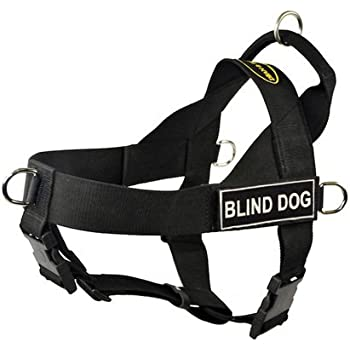Amazon Com Dt Universal No Pull Dog Harness Blind Dog