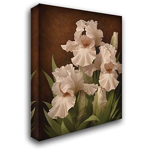 Iris Illumination II 44x56 Extra Large Gallery Wrapped Stretched Canvas Art by Levashov, Igor