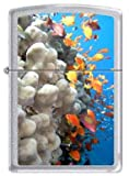 Zippo Custom Lighter - Ocean Coral Reef Blue Logo