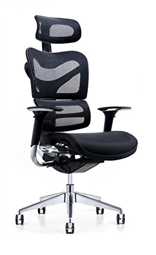 Our #2 Pick is the Poly and Bark Inverness Ergonomic Office Chair