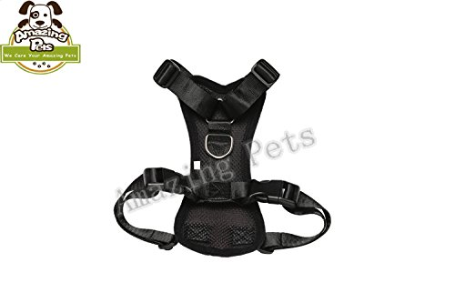 Best Buy! Amazing Pets Vehicle Dog Harness Mesh Vest with Safety Harness Belt/Color Black Premium and Modern Large Size