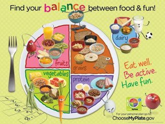 Learning ZoneXpress MyPlate 18 x 24 in Laminated English Poster, Ages 2 thru - Food Pyramid Poster