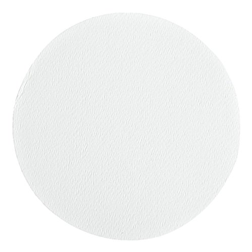 Whatman 1820-025 Glass Microfiber Binder Free Filter, 1.6 Micron, 4.3 s/100mL Flow Rate, Grade GF/A, 2.5cm Diameter (Pack of 100) by Whatman