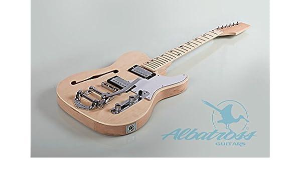 Albatross guitarras gk007 m Semi Guitarra Eléctrica Cuerpo Hueco Con Diapasón de arce: Amazon.es: Instrumentos musicales
