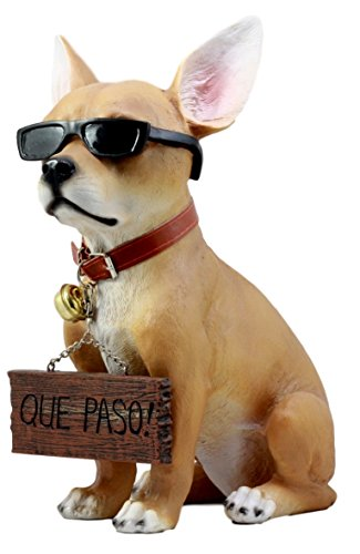 - Ebros Gift Que Paso Summer Sun Tanning Chihuahua Dog Statue Carefree Puppy with Cool Shades Welcome Greeter Figurine