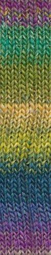 Noro Garden Silk 10 - Noro Silk Garden Yarn 457 Montana