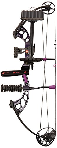 How to buy the best pse stinger x stiletto?
