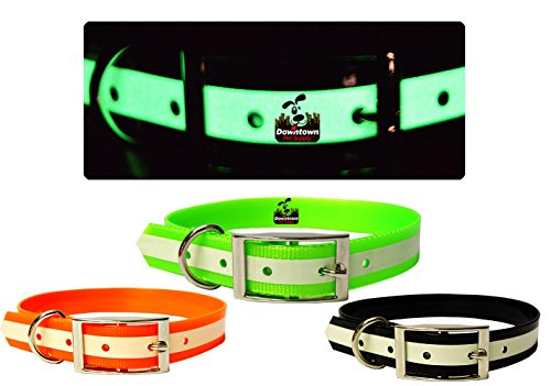 Collar Suitable Downtown Pet Supply