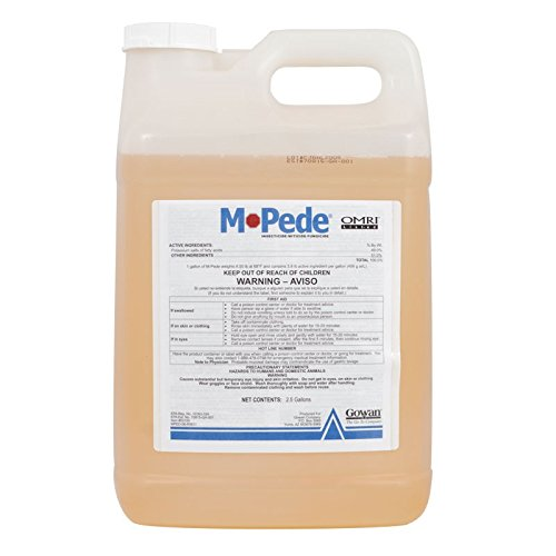 M-Pede Insecticide Soap Concetrate-Miticide-Fungicide-2.5 Gallons Natural - ea 1