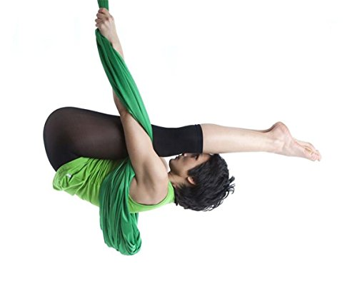 Dasking 5m Premium Aerial Silks Equipment Aerial Yoga Hammock Set antigravity yoga Swing Aerial Silk Yoga Set Safe Deluxe Aerial Kit (Dark Green)