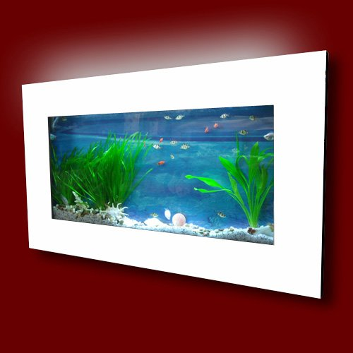 Spiffy pet products the ultimate guide to modern for Wall mounted fish tanks