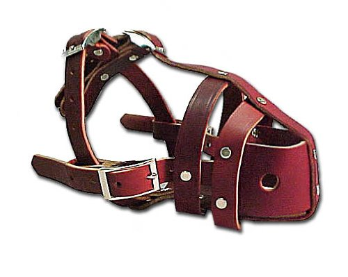 OmniPet Latigo Leather Safety Dog Muzzle Snout, Burgundy, 3-13