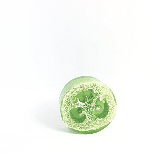 Price comparison product image HoneyBelle Coconut Oil, Glycerine, Eucalyptus Peppermint Loofah Sponge Soap – 5 Oz