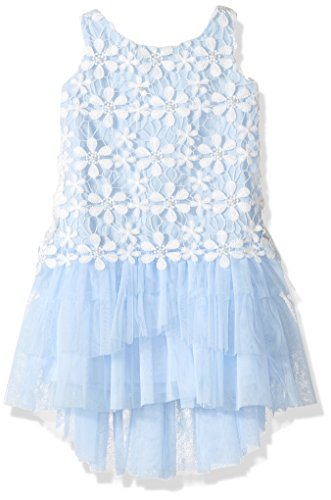Biscotti Girls' Pick a Posy Dress with Embroidered Bodice, Ivory/Blue, 2T