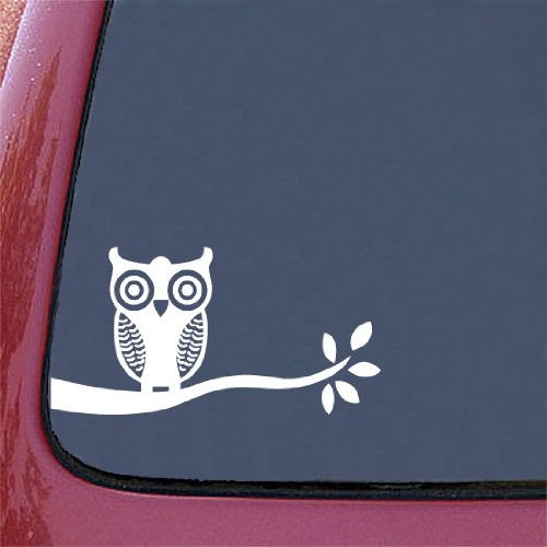 Owl Car Decal Amazoncom - Owl custom vinyl decals for car