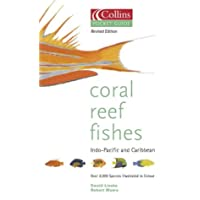 Collins Pocket Guide: Coral Reef Fishes