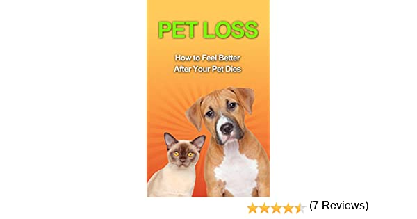 Amazon pet loss how to feel better after your pet dies ebook amazon pet loss how to feel better after your pet dies ebook amelia avery kindle store fandeluxe Document