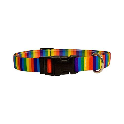 "Rainbow Stripes Dog Collar - Size Medium 14"" to 20"" Long - Made In The USA"