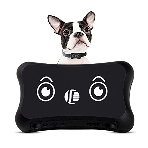 Pet GPS Tracker, Dog Activity Monitor for Android/iphone Waterproof Adjustable Collar for All Sizes Dogs and Pets