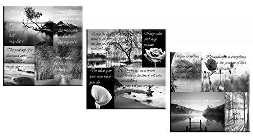 Set of 3 Canvas Picture Positive