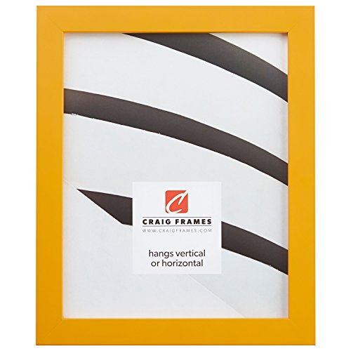 Craig Frames 140632 24 by 36-Inch Picture Frame, Solid Wood,