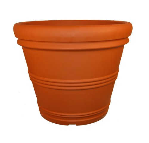 (Tusco Products RR155TC Rolled Rim Garden Pot, 15.5-Inch, Terra Cotta)