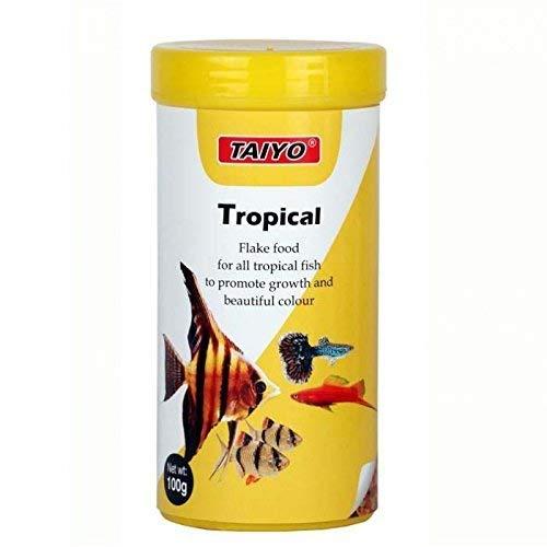 Foodie Puppies Tropical Flakes Enrich Formula with Multi Vitamins Healthy Aquarium Fish Food (100gm, Pack of 2)
