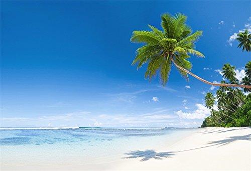 (OFILA Tropical Beach Backdrop 5x3ft Hawaiian Luau Photography Background Seaside Palm Trees Birthday Party Shoots Summer Vacation School Camp Events Kids Photos Bridal Shower Video)