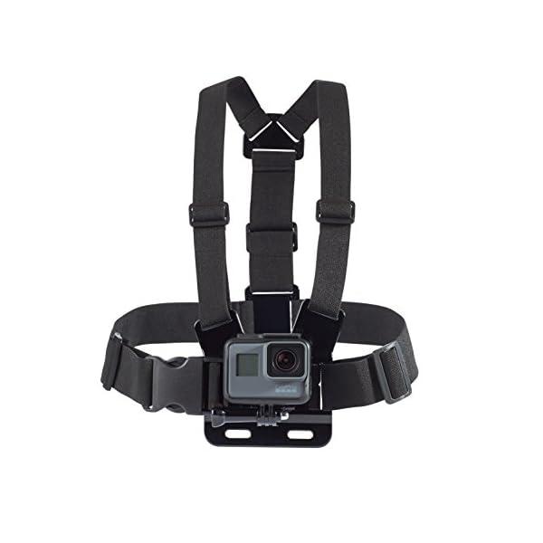 AmazonBasics GoPro Chest Mount Harness 1