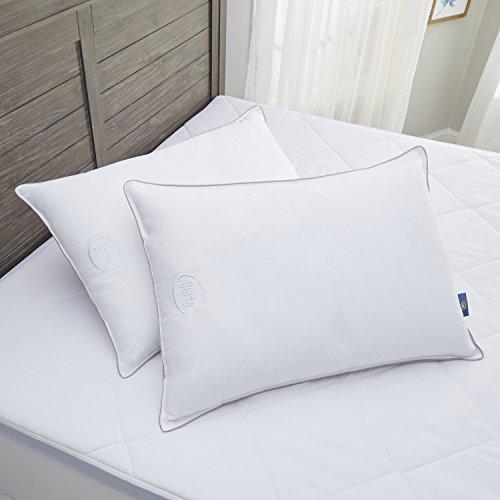 Serta Perfect Sleeper Down Illusion Pillow 2 Pack (Standard/Queen)