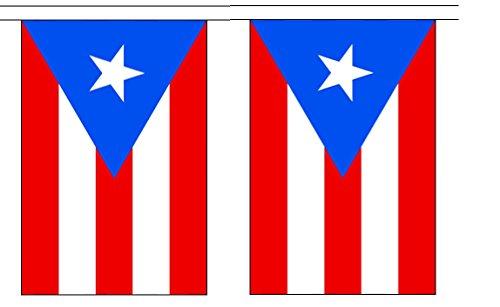 10' Puerto Rico String Flag Party Bunting Has 10 Puerto Rican 6