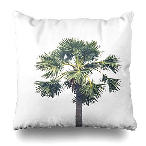 Ahawoso Throw Pillow Cover Square 16x16 Nature Green Big Sugar Palm Abstract Metaphor Bonsai Botanic Botanical Botany Branch Design Eco Zippered Cushion Case Home Decor Pillowcase ()