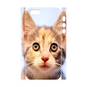 C-Y-F-CASE DIY Design Funny And Cute Cat Pattern Phone Case for iPhone 5,5S