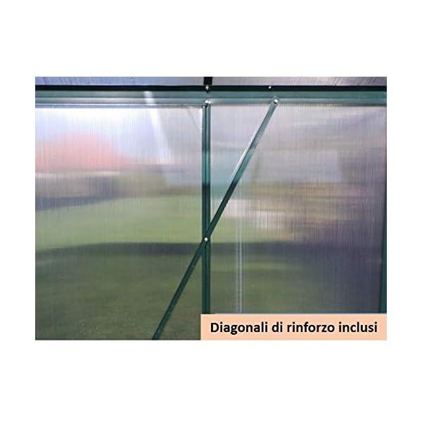 Serra Gran Torino in Alluminio e policarbonato alveolare da 6mm. Base Inclusa. Dimensioni 250 x 430 cm 5 spesavip