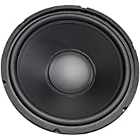 12 Woofer with Poly Cone and Rubber Surround 120W RMS at 8ohm
