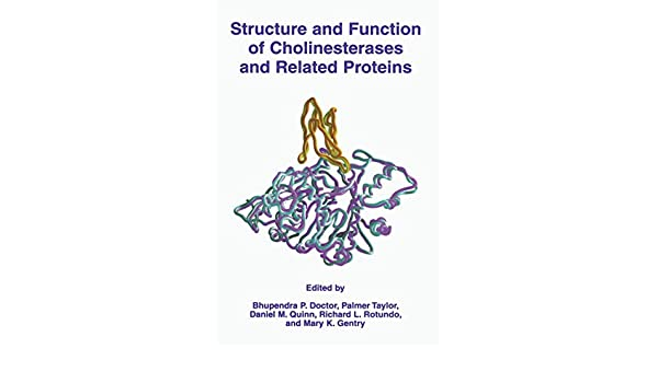 Structure and Function of Cholinesterases and Related Proteins