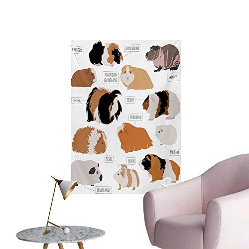 Anzhutwelve Guinea Pig Photo Wall Paper Infographic Design Classification for Types of Rodent BreedsSand Brown Amber and Ginger W20 xL28 Space Poster