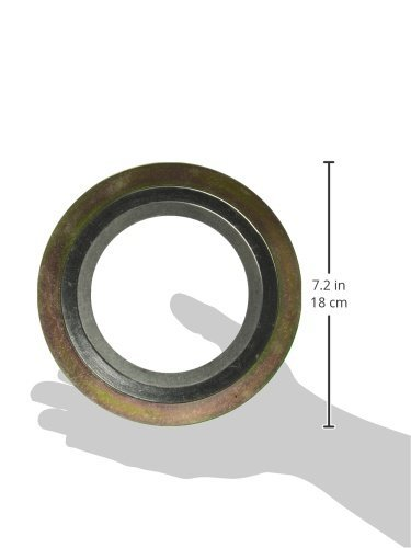 4 Pipe Size x 300# Class Flange x 316SS//Flexible Graphite Sur-Seal Teadit 9000IR4316GR300  Spiral Wound Gasket with 316SS Inner Ring Inc