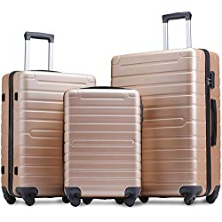 Flieks Luggage Sets 3 Piece Spinner Suitcase Lightweight 20 24 28 inch (Champagne Gold)
