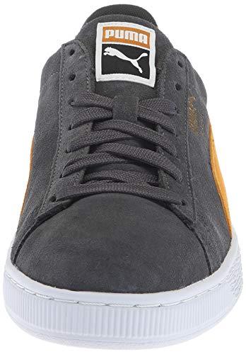 Pour En Chaussures Brown Iron Daim Classiques Gate puma Puma buckthorn White Hommes g7Z1qfW1a