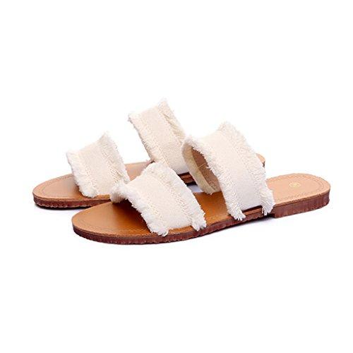 LIXIONG Portátil Sandalias cómodas de una palabra Flop flip femenino del fondo del verano Denim cómodo y dedo del pie femenino simple -Zapatos de moda ( Color : B , Tamaño : EU37/UK4-4.5/CN37 ) C