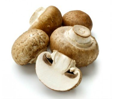 - Royal Champignon Seeds Spores Royal Agaricus Bisporus Portobello Mushrooms/Fungus (25g) by Garden Pleasure