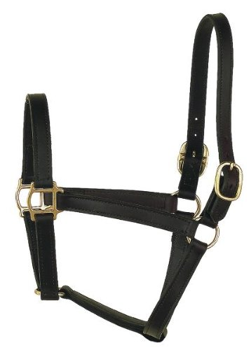 (Perri's Horse Track Style Leather Turnout Halter, Black)